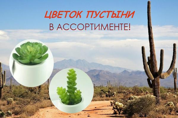 Искусственные цветы Цветок пустыни ОПТОМ. В АССОРТИМЕНТЕ!