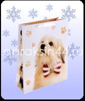 Бумажные подарочные пакеты ДЕТСКИЕ 16 х 18 х 7 см оптом. Артикул - TZ-6583.