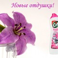 http://apraksin44.ru/wp-content/uploads/2015/04/698.jpg