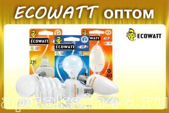 Ecowatt оптом